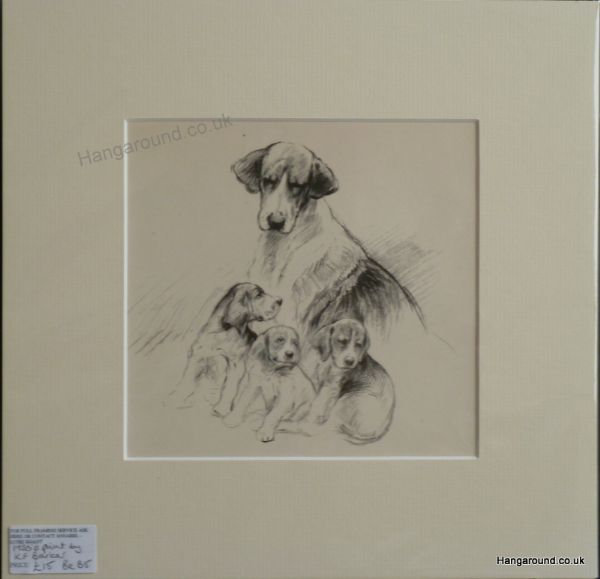 Beagle mother and  3 puppies 1940's print by K F Barker